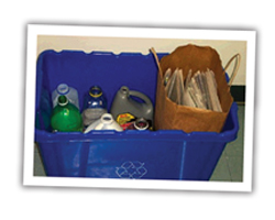 Sorted Bin of Recyclables